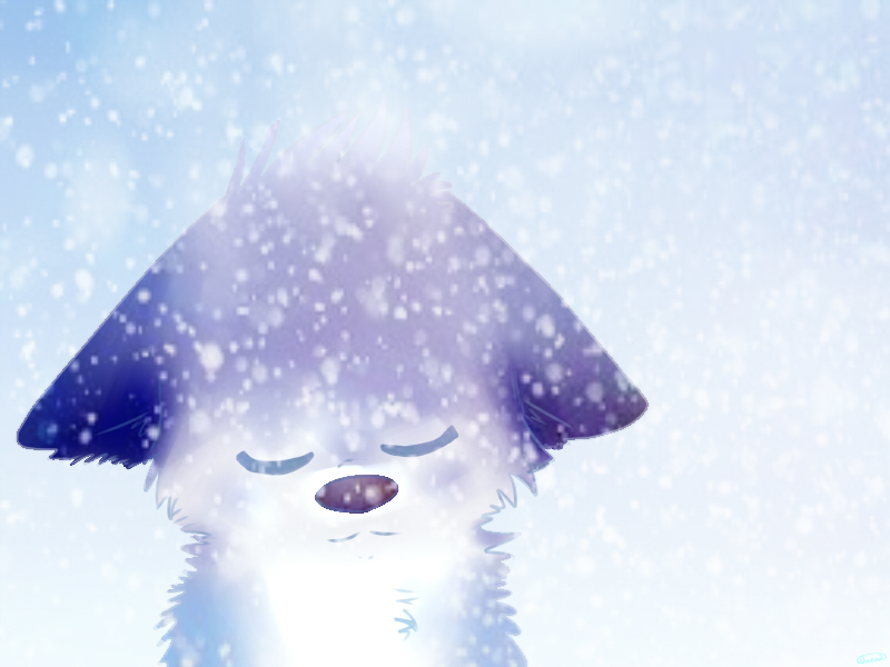 peaceful snowfall by puppyluver92