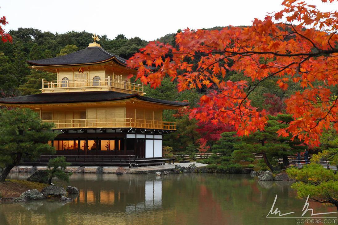 pin golden pavilion kyoto - photo #37