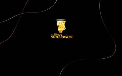 Shine Like Sunflowers