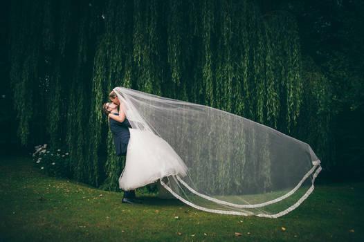 the veil ....