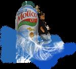 Molico - 2 semestre 2007 by pok3