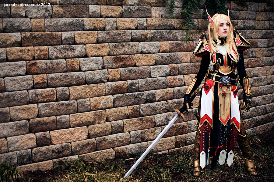 Blood Elf Paladin by Flying-Fox