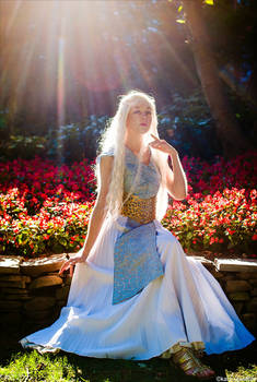 Daenerys of the House Targaryen