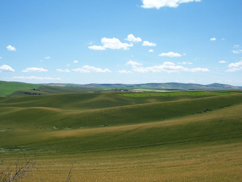 Pin Green-rolling-hills-of-tuscany-pixdaus on Pinterest