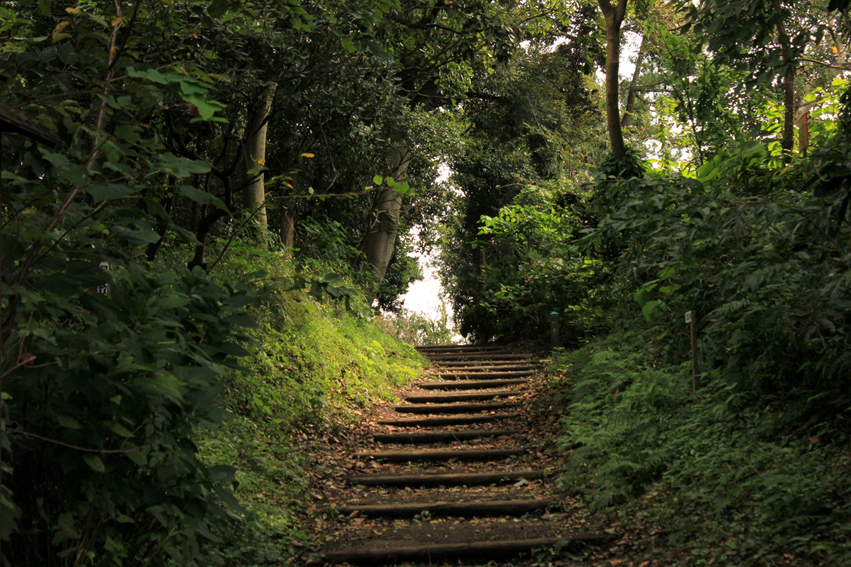 path by Skye33