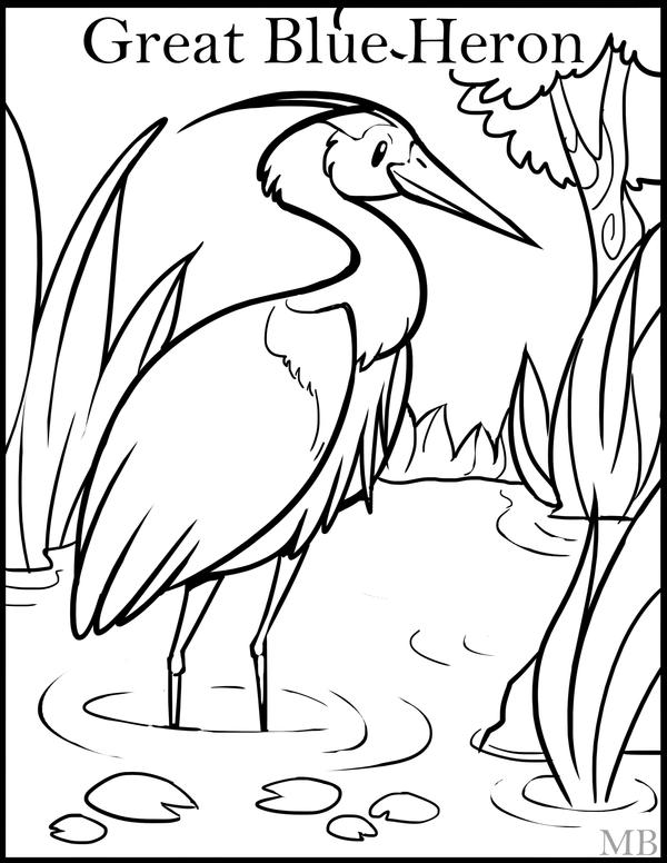 blue heron coloring pages - photo#25