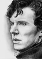 Sherlock by Miss-Catherine