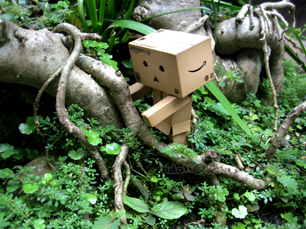 Little Danbo in The Jungle by odoll