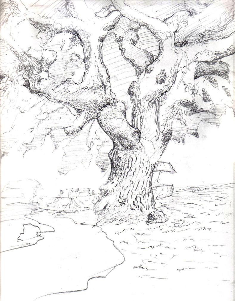 sketch tree by johnercek on deviantart
