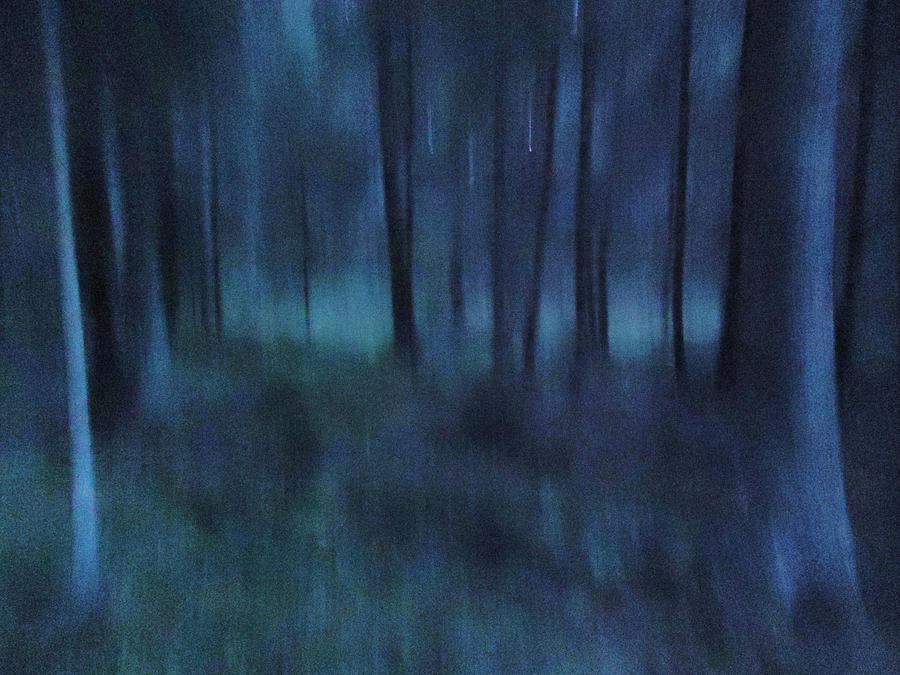 Quiet welcome by skogsanda