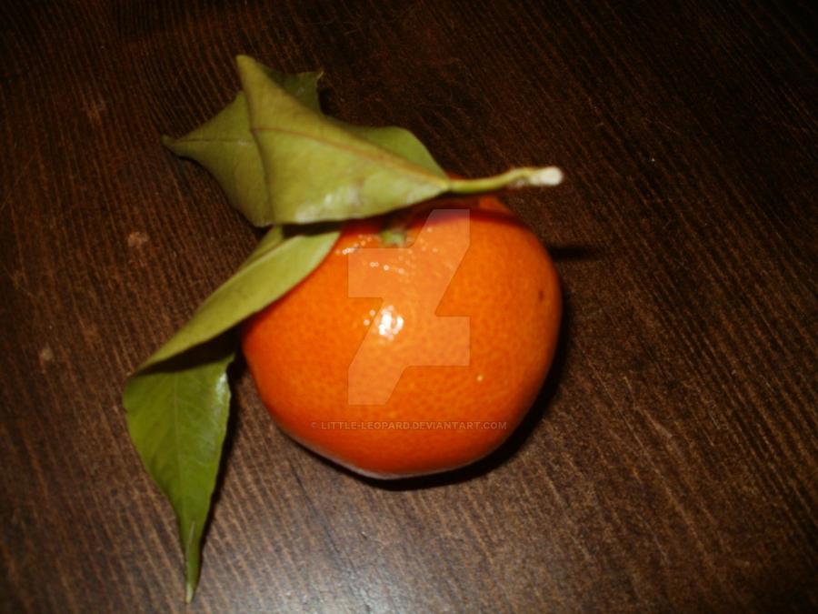 An orange by Little-leopard