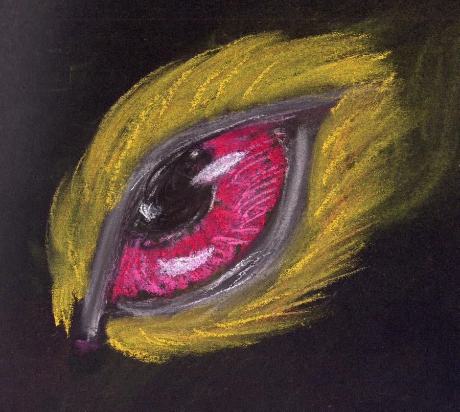 Fire Eye by Little-leopard