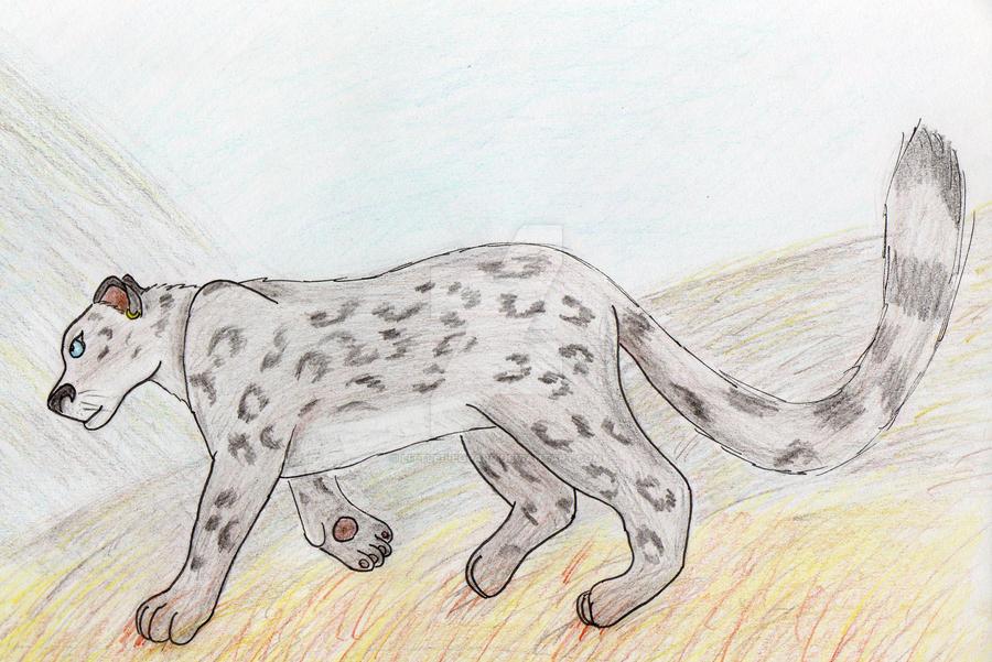 Vane Ref - 2012 by Little-leopard
