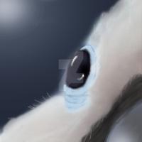 Cockatoo Eye by Little-leopard