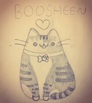 Boosheen