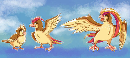 Pidgey Evolution line by Kosmotiel