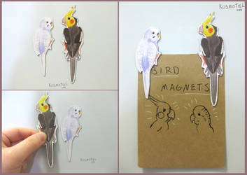 Cockatiel and Budgie Magnets by Kosmotiel
