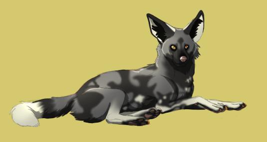 African Wild Dog by fatakita