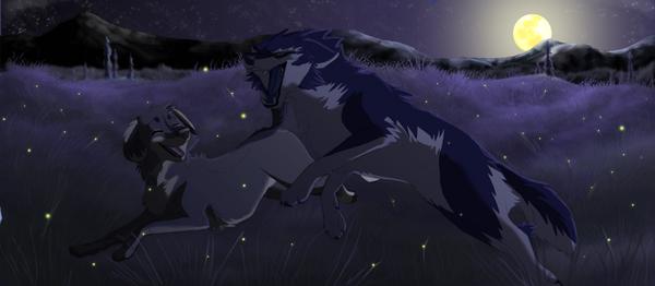 Fireflies by fatakita