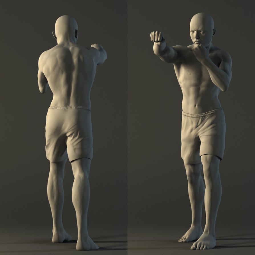 Male anatomy study by Maximiliaan on DeviantArt