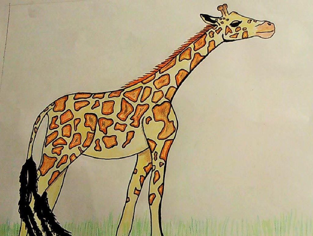 Uncategorized Giraffe Drawings cute giraffe drawing by halokitttiekat on deviantart halokitttiekat