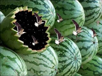 Spacial watermelon by danielhbrito