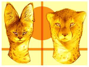 T w T Meow!