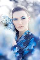 Dreama 7 by DmajicPhotography