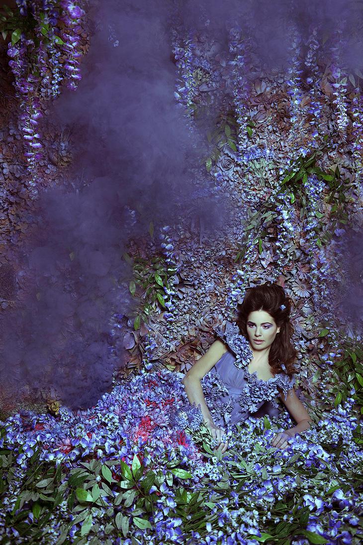 Wisteria Princess III by DmajicPhotography