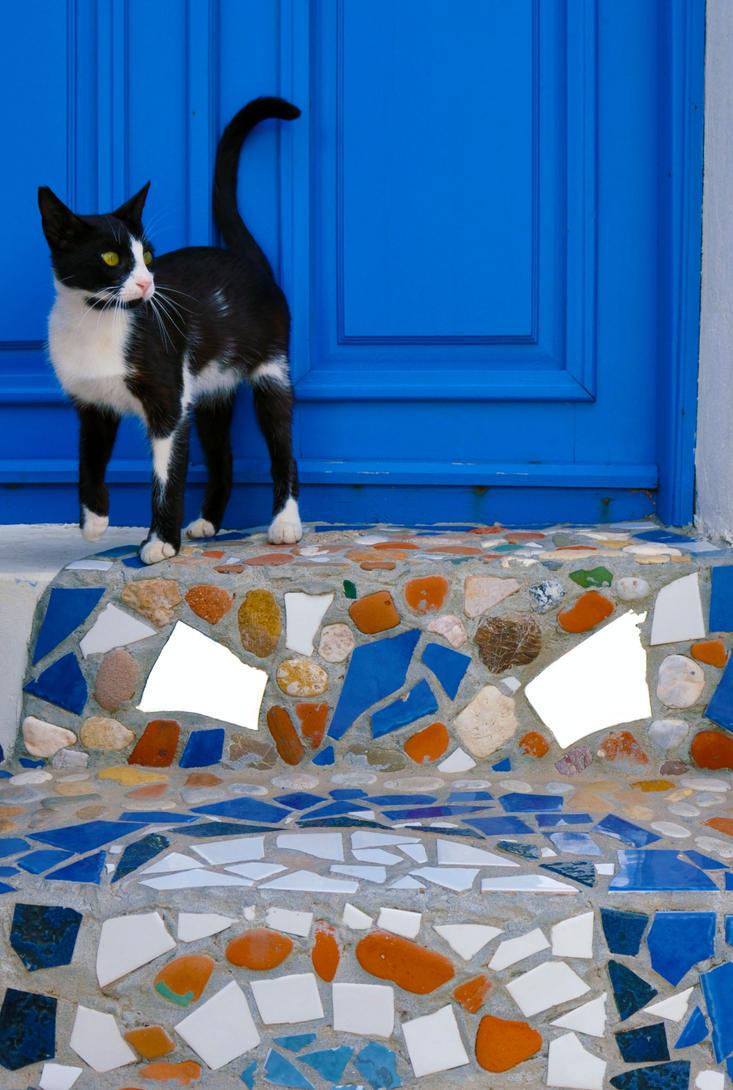 Bonnie The Cat by deinnorra