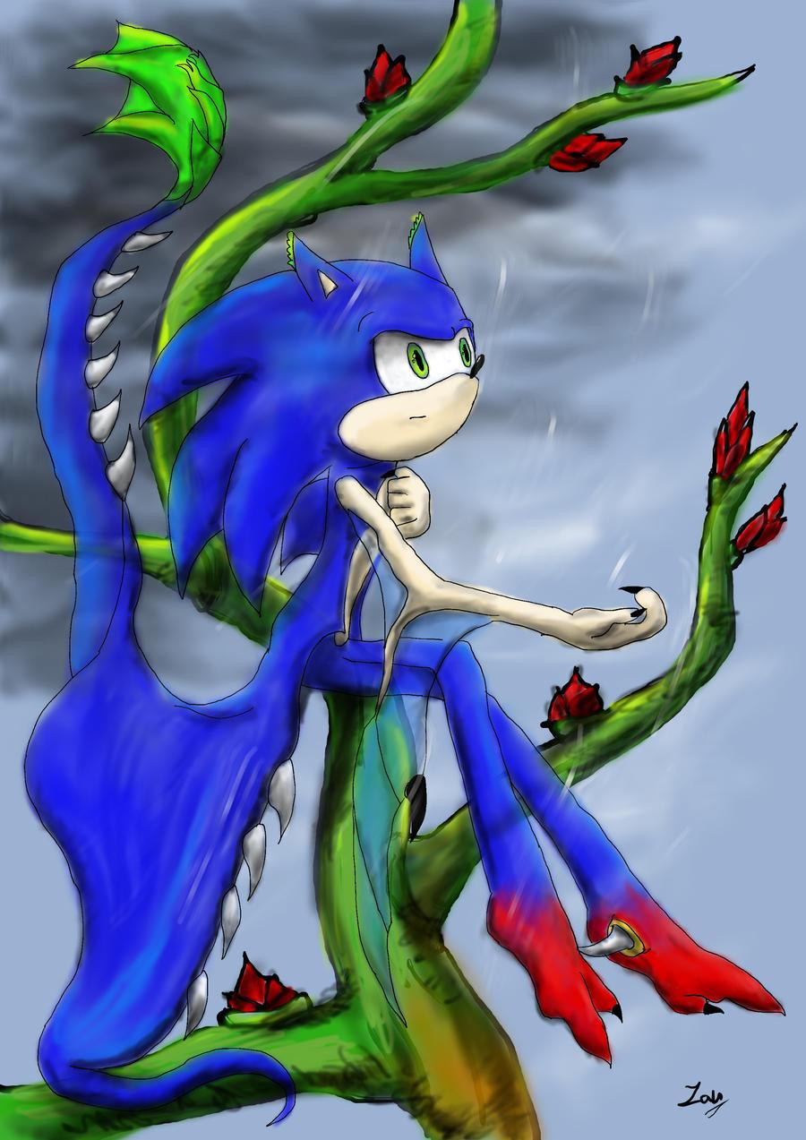 Sonic The Hedgehog    Dragonhog  By Zankha On Deviantart