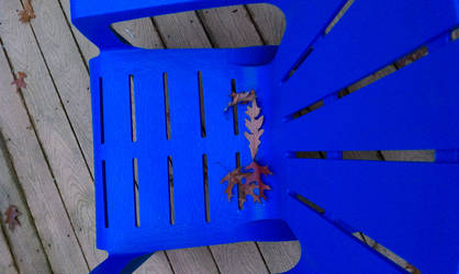 Fall Leaves Sit in Blue Chair by whatategilbertgrape
