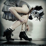 Zebra Lala