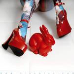 Follow the red rabbit II by Alyz