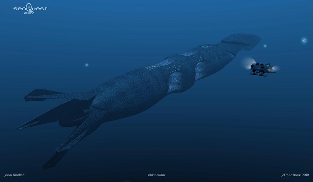 SeaQuest - Arriving by dragonpyper