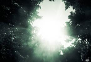 Shining Sun by dawdude