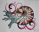 nautilus swirl by LotusElysse