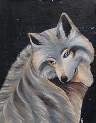 wolf by LotusElysse