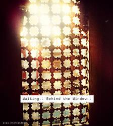 waiting behind the window ..