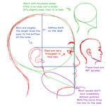 Profile anatomy tutorial