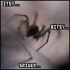 CKR-Spider by cittykatraina
