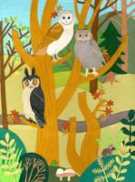 Barn, Great Horned, Long Eared Owls by JessicaRaeGordon