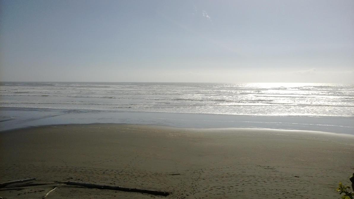 ocean shores hindu dating site Shores check beach closures before swimming, surfing, or kayaking check shellfish safety before harvesting shellfish don't coastal atlas version 62.