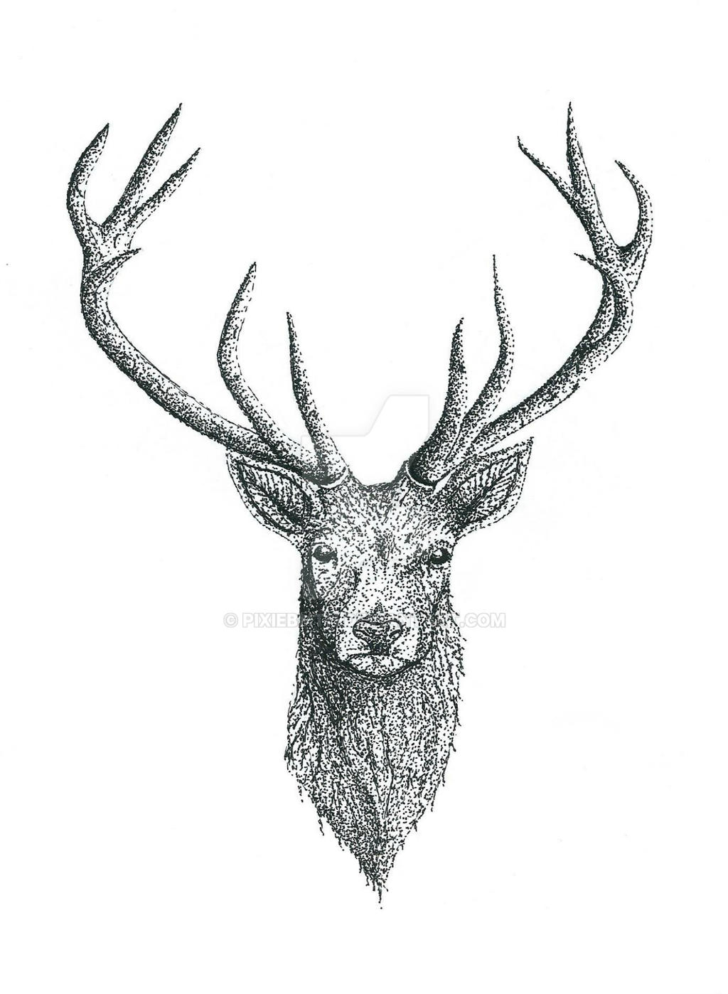 deer tattoo design by pixiebmth on deviantart. Black Bedroom Furniture Sets. Home Design Ideas