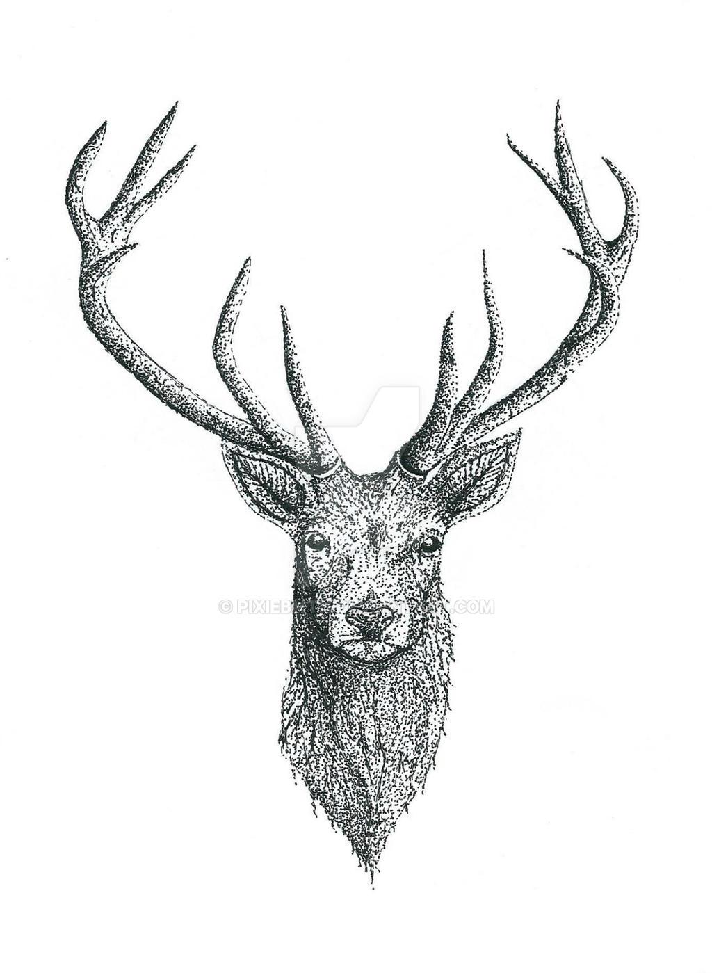 Deer Tattoo Design By Pixiebmth On Deviantart