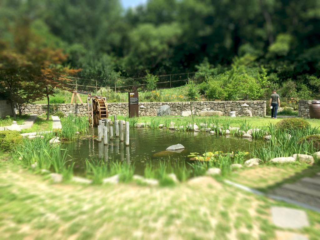 DMZ Relaxing Stop by SamXJing