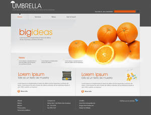 Umbrella Business Site