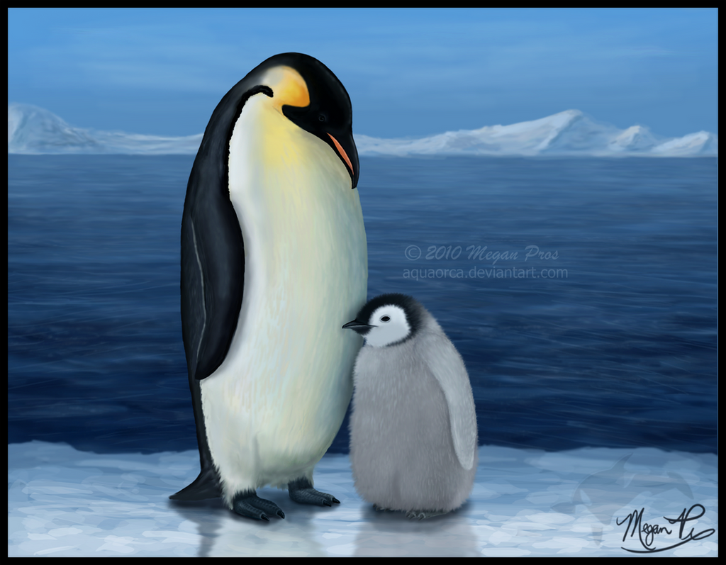 Heather's Penguins by AquaOrca