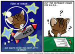 Visas is a Space Kitty