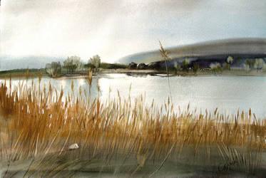 River Bank by selma-todorova